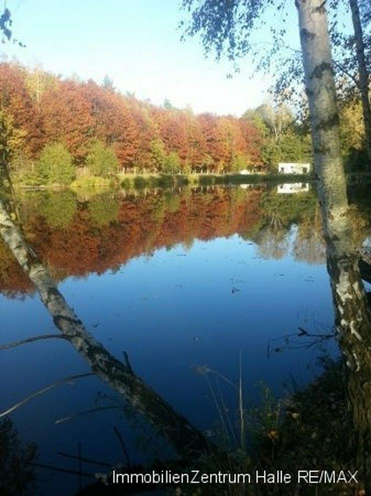 Traumhaftes Seegrundstück in Großböhla - Grundstück kaufen - Bild 1