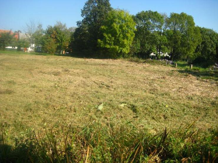 Bild 4: Grundstück in Wilczkow bei Breslau zu verkaufen