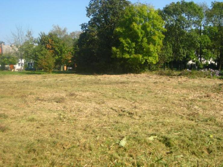Bild 2: Grundstück in Wilczkow bei Breslau zu verkaufen