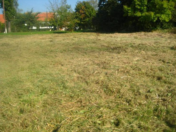 Bild 5: Grundstück in Wilczkow bei Breslau zu verkaufen