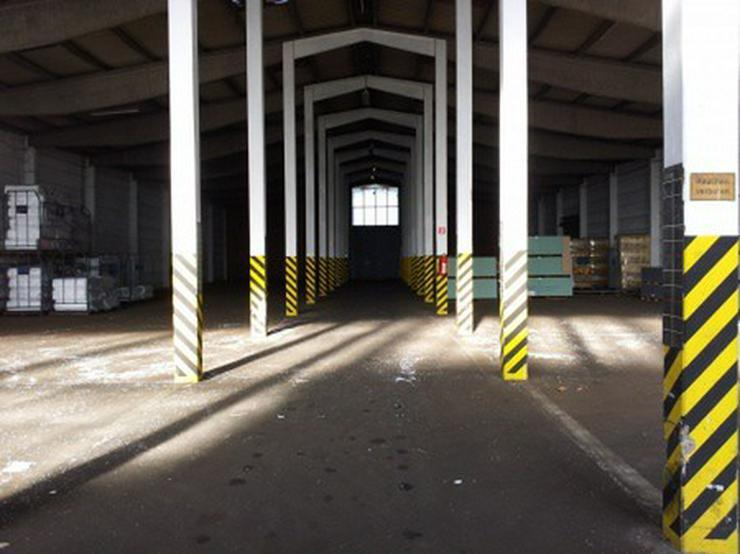 Kalthalle mit großer Freifläche und Büro, guter Zustand - Gewerbeimmobilie mieten - Bild 1