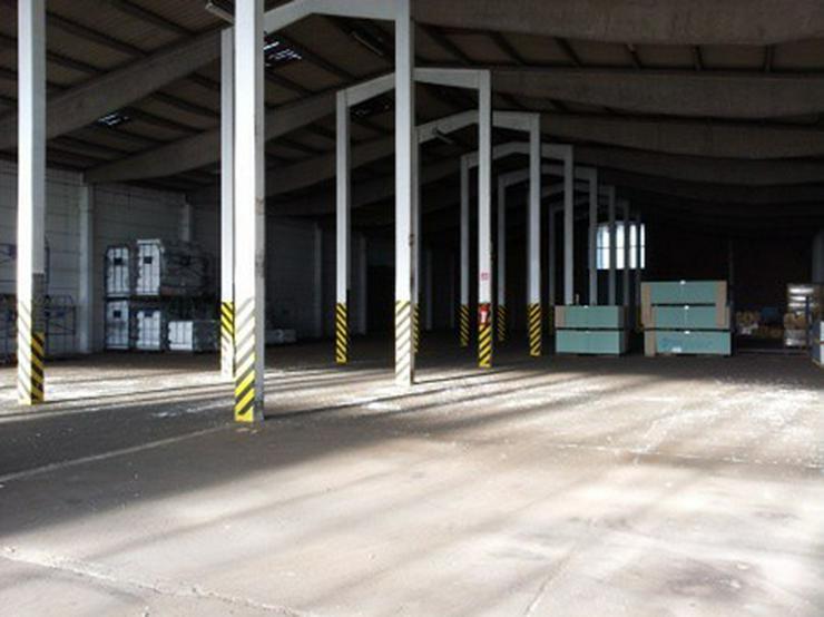 Bild 6: Kalthalle mit großer Freifläche und Büro, guter Zustand