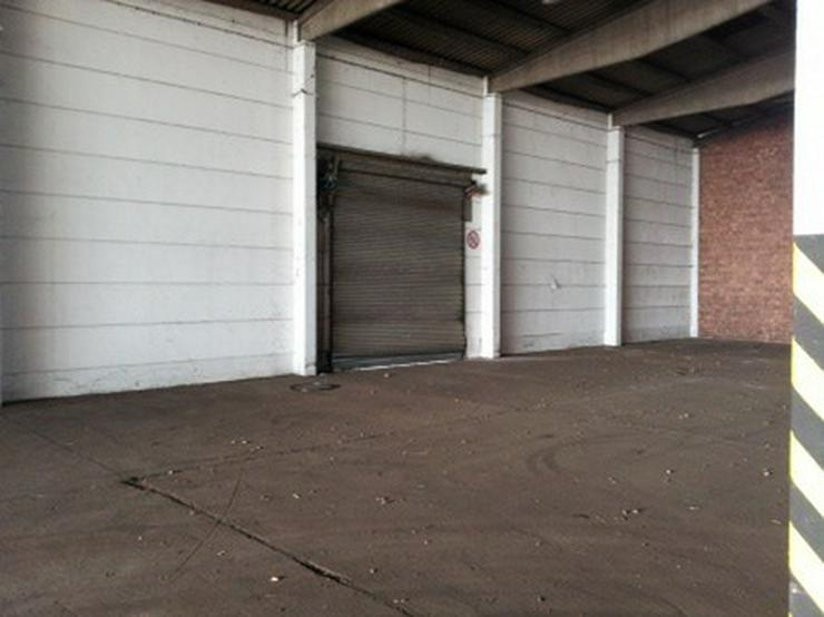 Bild 8: Firmensitz mit Büro, Kalthalle befestigte Außenfläche