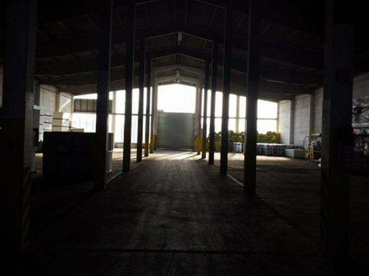Bild 11: Firmensitz mit Büro, Kalthalle befestigte Außenfläche