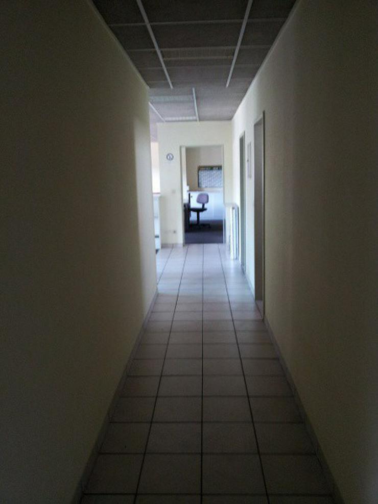 Bild 14: Firmensitz mit Büro, Kalthalle befestigte Außenfläche