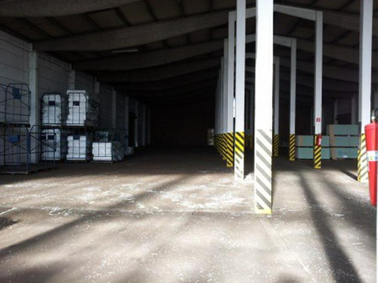 Bild 7: Firmensitz mit Büro, Kalthalle befestigte Außenfläche