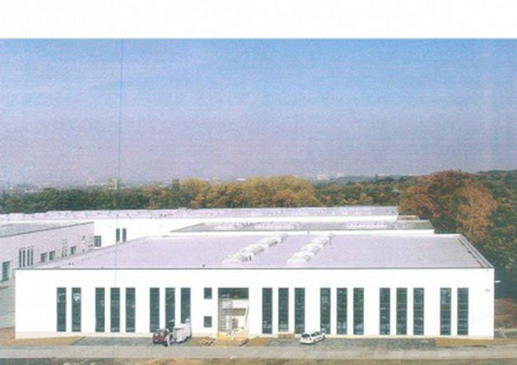 Bild 2: Hallenflächen, Neubau in Autobahnnähe, Industriegebiet