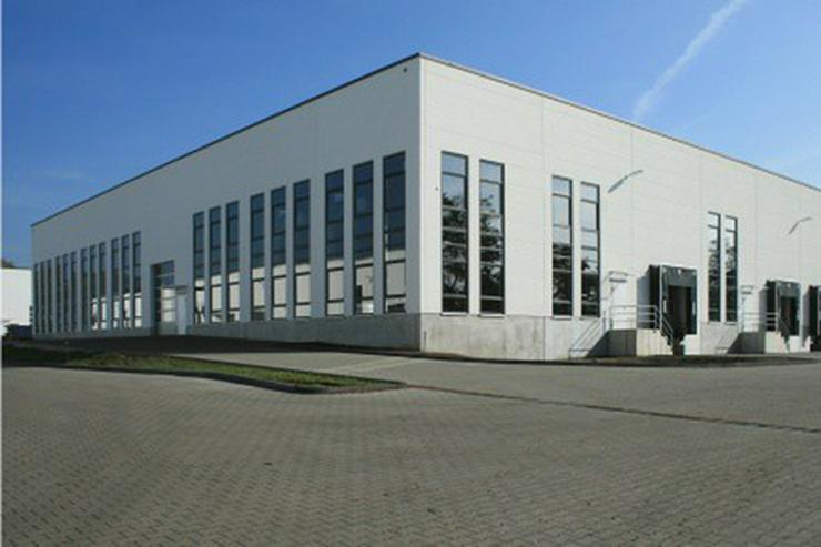 Bild 3: Hallenflächen, Neubau in Autobahnnähe, Industriegebiet