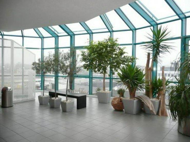 Modernes Büro, 152 qm // PROVISIONSFREI // - Gewerbeimmobilie mieten - Bild 2