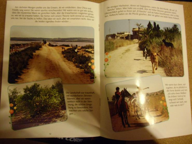 Bild 2: El Rancho Wo sind die Pferde - Comic PonyClub