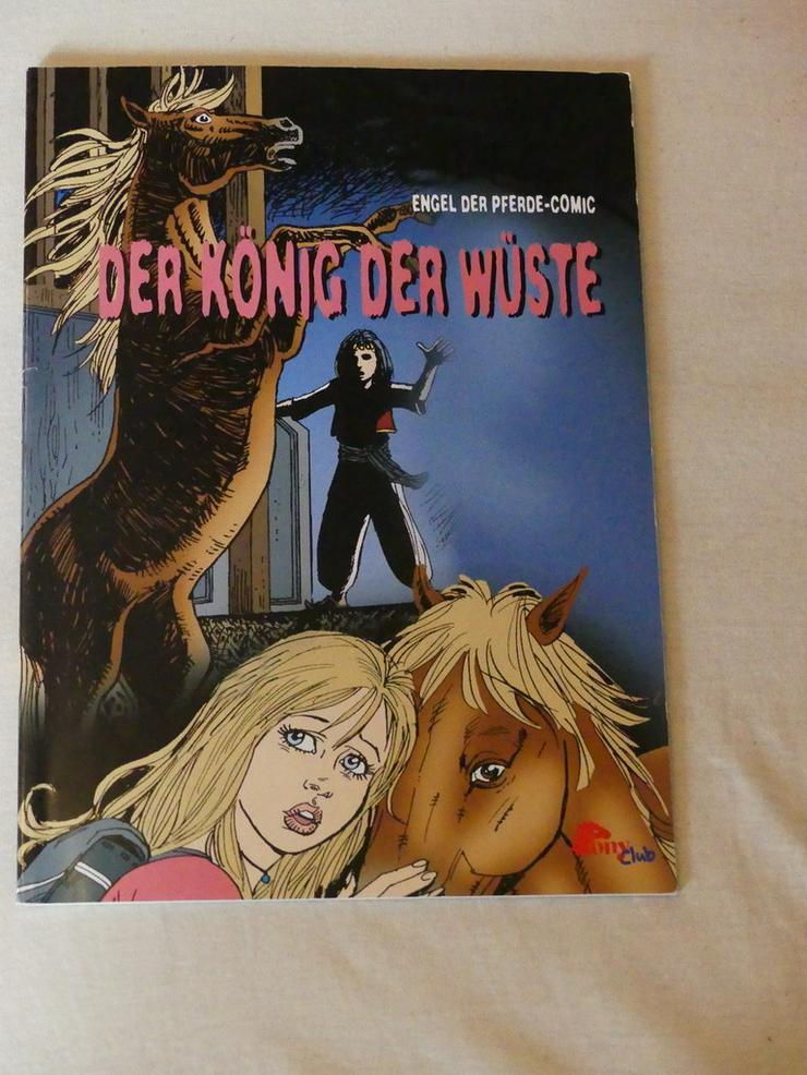 Der König der Wüste_ ein Comic vom Pony Club