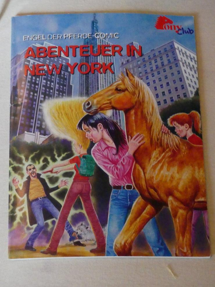Abenteuer in New York: ein Comic vom Pony Club