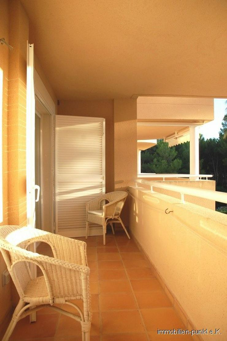 Bild 5: Zu Hause auf Mallorca!