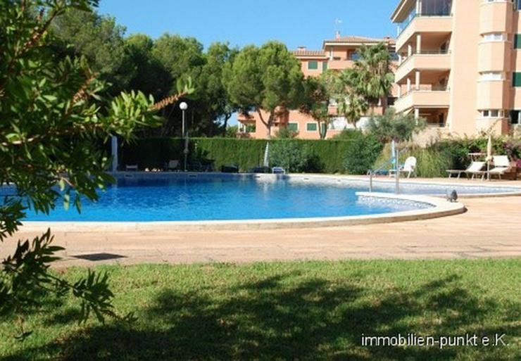 Zu Hause auf Mallorca!