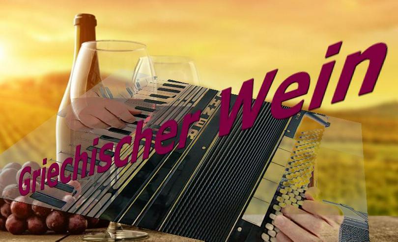 Bild 2: Akkordeonspieler, Alleinunterhalter