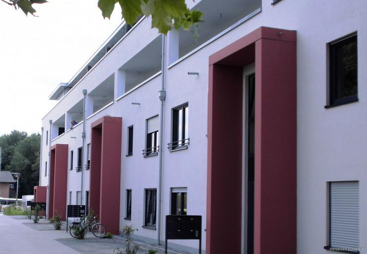 Bild 4: Neubau mit Komfort - Ihre Eigentumswohnung mit eigenem Garten