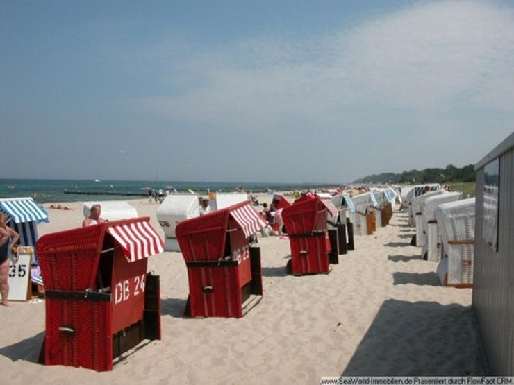 Bild 4: Neu und bezahlbar - Baugrundstücke im Ostseebad Kühlungsborn