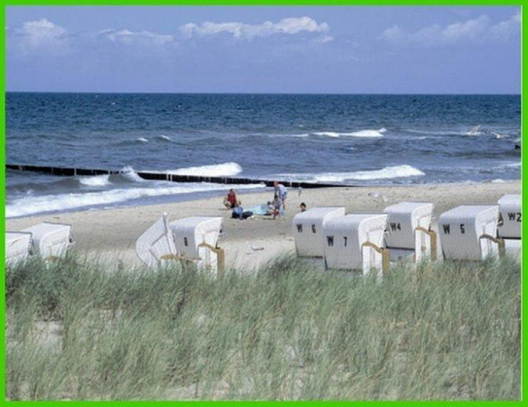 Bild 3: GARANTIERT! Die letzten 3 Grundstücke mit unverbaubarem Ostseeblick und exclusivem Strand...