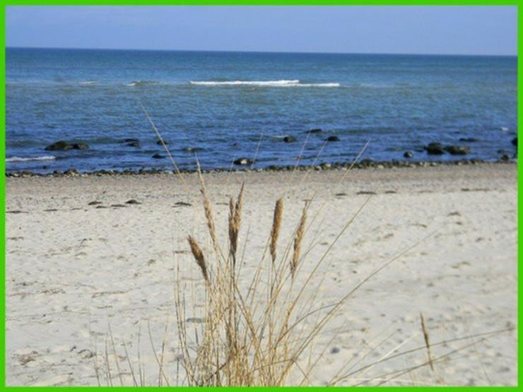 Bild 5: GARANTIERT! Die letzten 3 Grundstücke mit unverbaubarem Ostseeblick und exclusivem Strand...