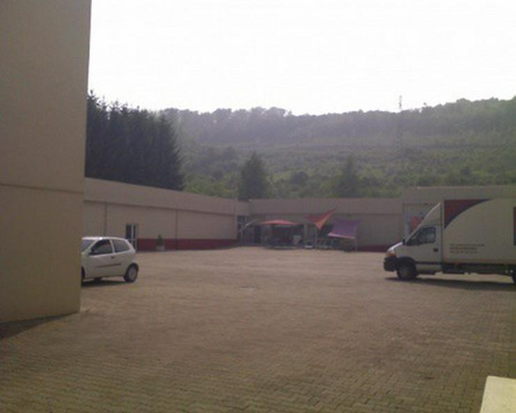 Lager-, Produktions- und Verkaufshalle in Durchgangslage an der Deutsch-Französischen Gre... - Bild 1