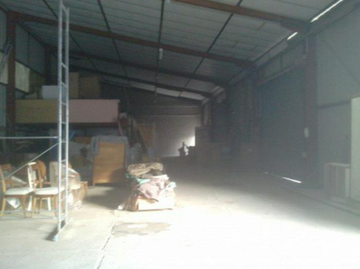 Bild 7: Lager-, Produktions- und Verkaufshalle in Durchgangslage an der Deutsch-Französischen Gre...