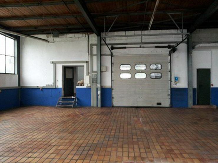 Halle mit Rolltor zum Arbeiten, freitragend - Gewerbeimmobilie mieten - Bild 1