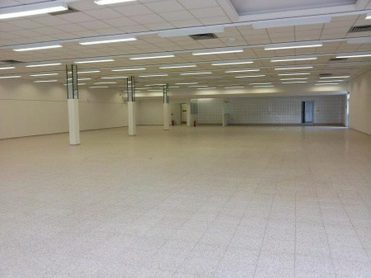 Bild 6: Verkaufshalle im Top Zustand