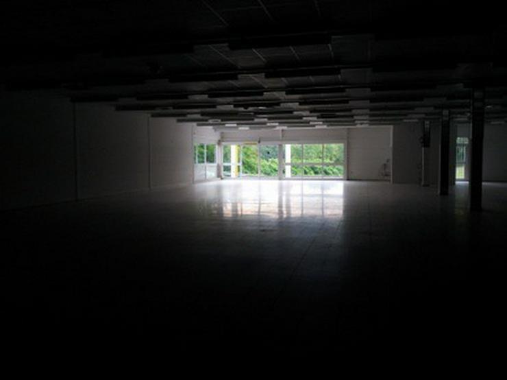 Bild 3: Verkaufshalle im Top Zustand
