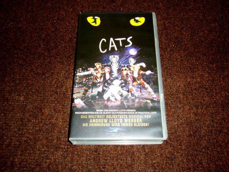 VHS Musical Cats