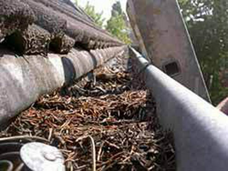 Bild 3: Dachrinnereinigung in Bochum 2,19€ pro Meter