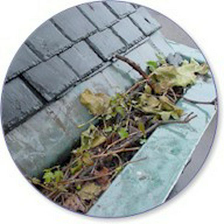 Bild 2: Dachrinnereinigung in Bochum 2,19€ pro Meter