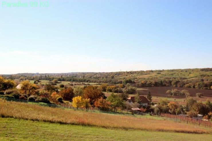 Bild 5: Baugrundstück mit Panoramablick