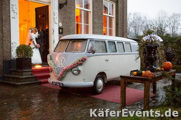 Hochzeitsauto Vw Bulli T1 oder T2 Bus mieten - Vermietung & Verleih - Bild 1