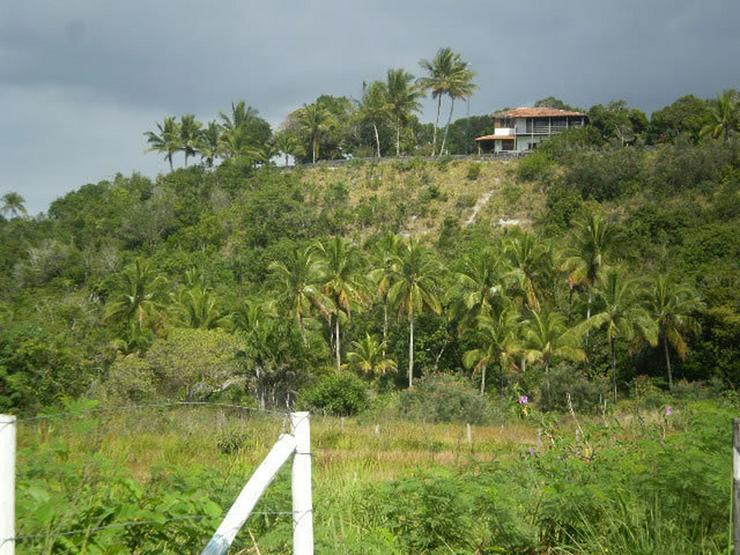 Bild 3: Großes Baugrundstück in Brasilien