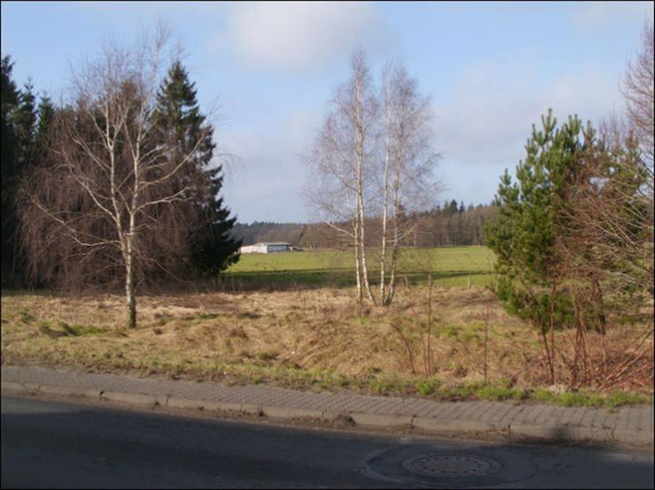Bild 3: Baugrundstück in Lühmannsdorf 10 km vor der Insel Usedom
