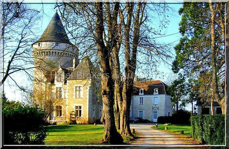 Bild 6: Prachtvolles Schloss / Schlosshotel südlich von Paris - Orleans mit viel Grundbesitz zu k...