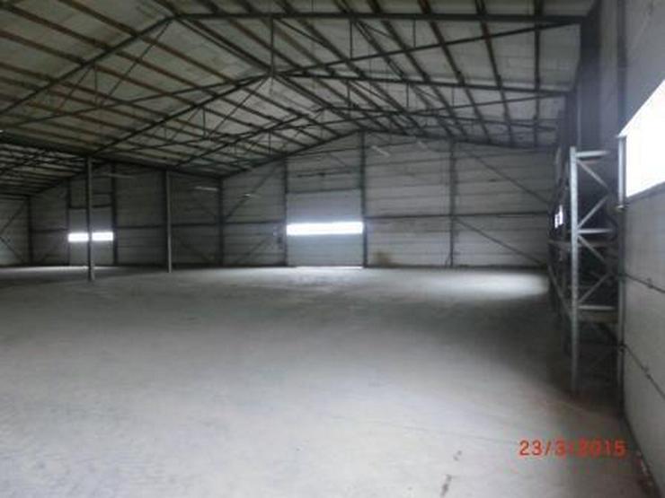 Bild 3: Isolierte Lagerhalle mit 6 Rolltoren und Industrieboden, LKW-Zufahrt
