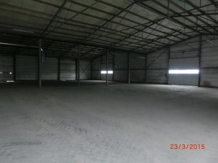 Bild 4: Isolierte Lagerhalle mit 6 Rolltoren und Industrieboden, LKW-Zufahrt