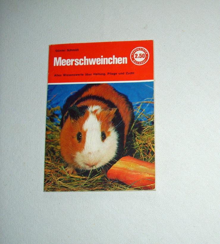 Meerschweinchen-Buch