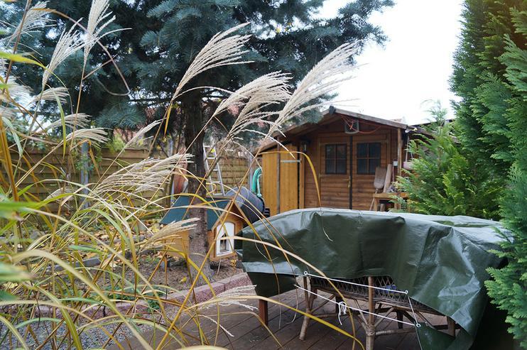 Bild 5: 2003 in ländlicher Lage erbautes Niedrigenergiehaus mit viel Platz innen und draussen