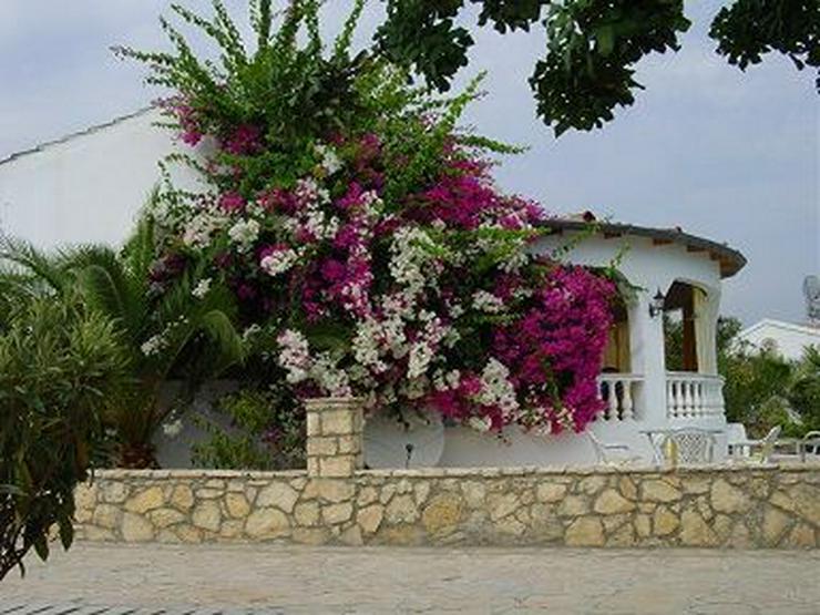 Bild 6: Traumhafte Villa mit Pool, eine Juwele im Paradies !