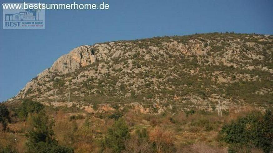 Bild 2: Großes Anwesen in Mahmutlar mit Privatpool und Meerblick und Pferdekoppel
