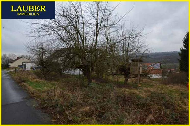 Bild 2: LAUBER IMMOBILIEN: Großes Baugrundstück mit 2. Zufahrt und weiterer Bebauung in SLÜ-Nie...