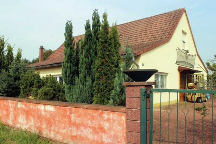 Bild 3: Nahe Fähre Kappel: Gewerbeobjekt, Haus mit ca. 200qm und 5000 qm Grundstück