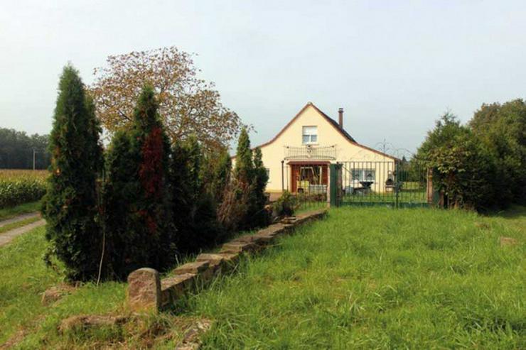 Nahe Fähre Kappel: Gewerbeobjekt, Haus mit ca. 200qm und 5000 qm Grundstück