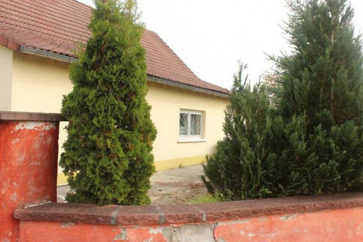 Bild 9: Nahe Fähre Kappel: Gewerbeobjekt, Haus mit ca. 200qm und 5000 qm Grundstück