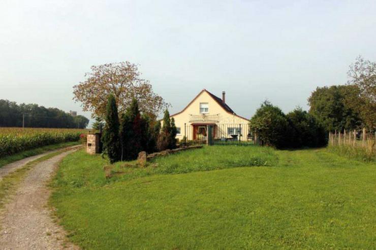 Bild 8: Nahe Fähre Kappel: Gewerbeobjekt, Haus mit ca. 200qm und 5000 qm Grundstück