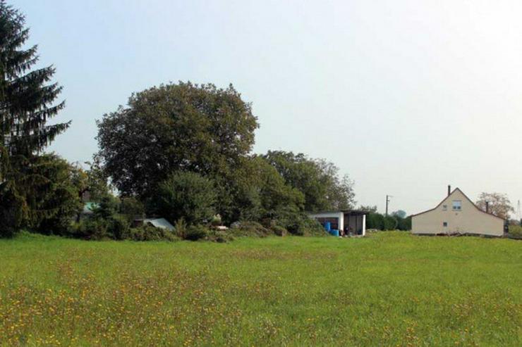 Bild 7: Nahe Fähre Kappel: Gewerbeobjekt, Haus mit ca. 200qm und 5000 qm Grundstück