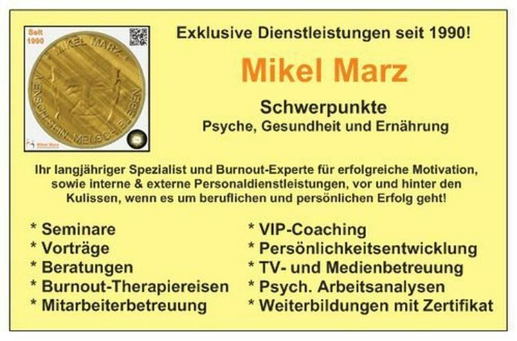 Das Burnout-Seminar von und mit Mikel Marz