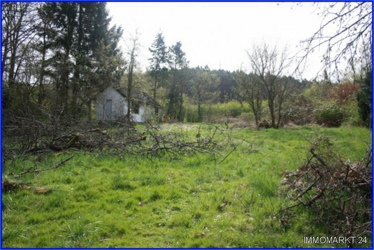 *** Kleines Paradiese für Naturliebhaber *** - Grundstück kaufen - Bild 1
